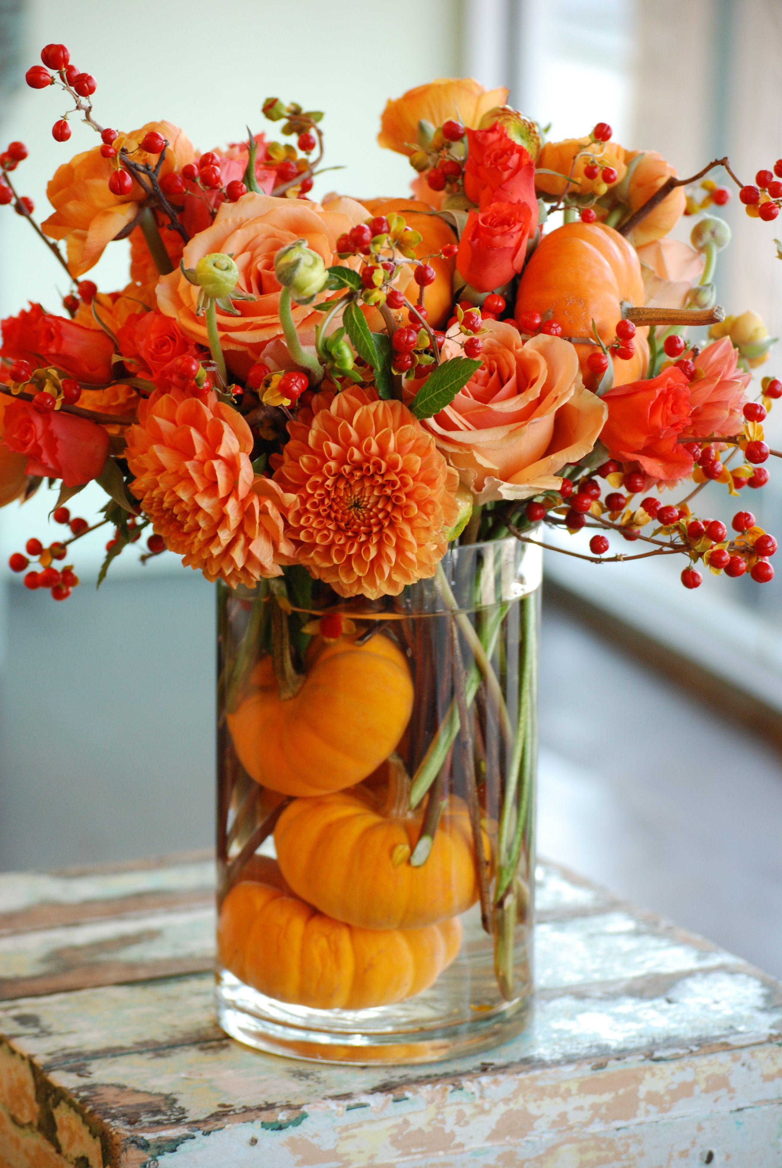 orange dahlias orange roses orange ranunculus pumpkins bittersweet orange fall flowers
