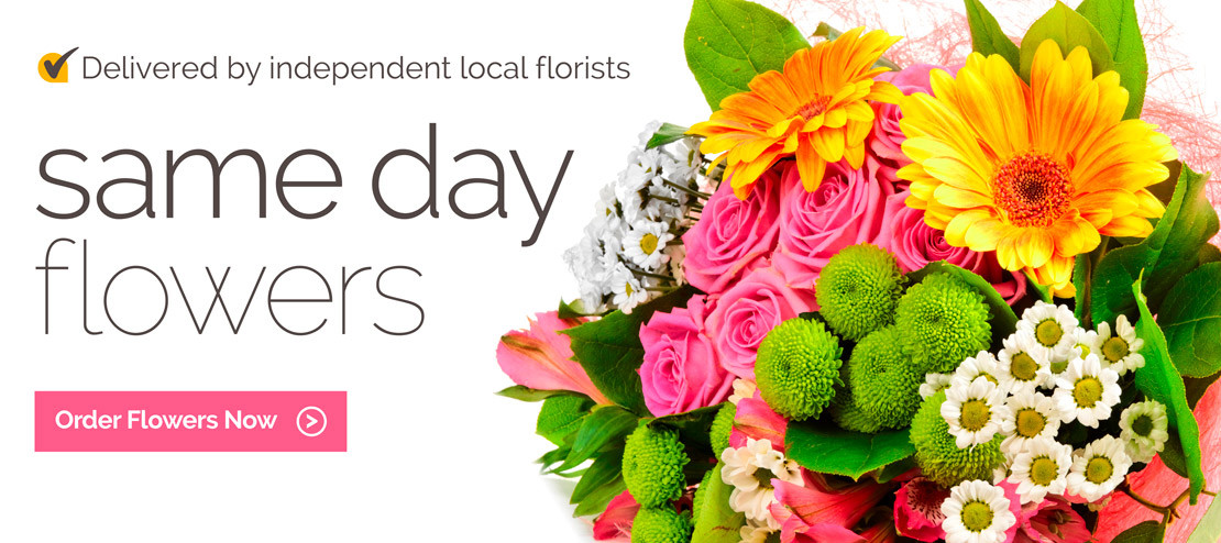 Send Flowers San Francisco Same Day Lovely Send Flowers to Malta by Local Florists Flower Delivery