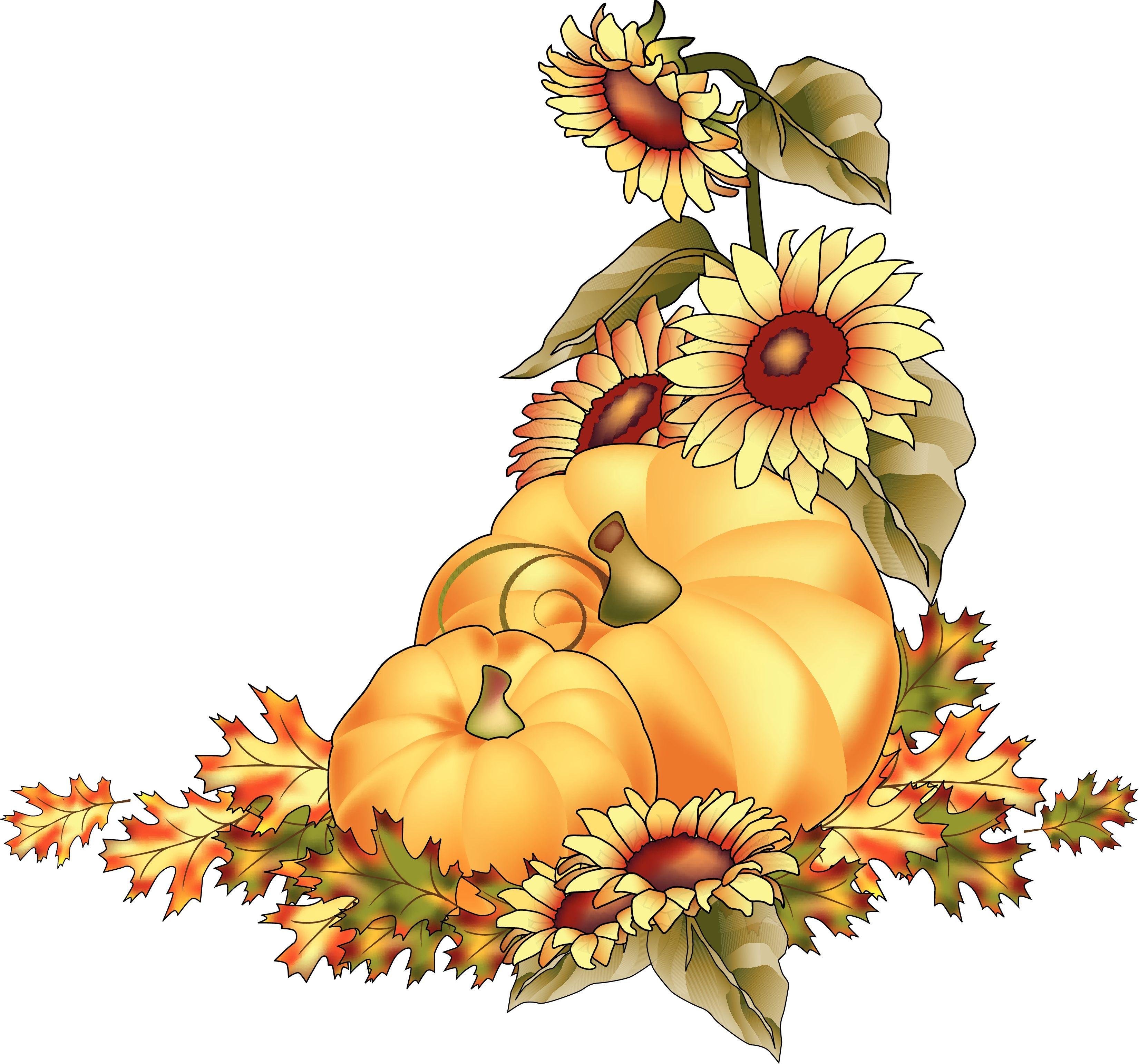 Sunflower Clip Art Free Beautiful Fall Pumpkin Clip Art Pumpkins at Harvest Color Clipart