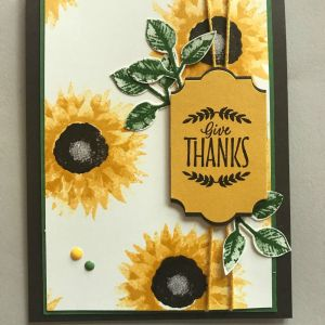 Sunflower Starts New I Am so Excited to Introduce A Few New Products From This Year S