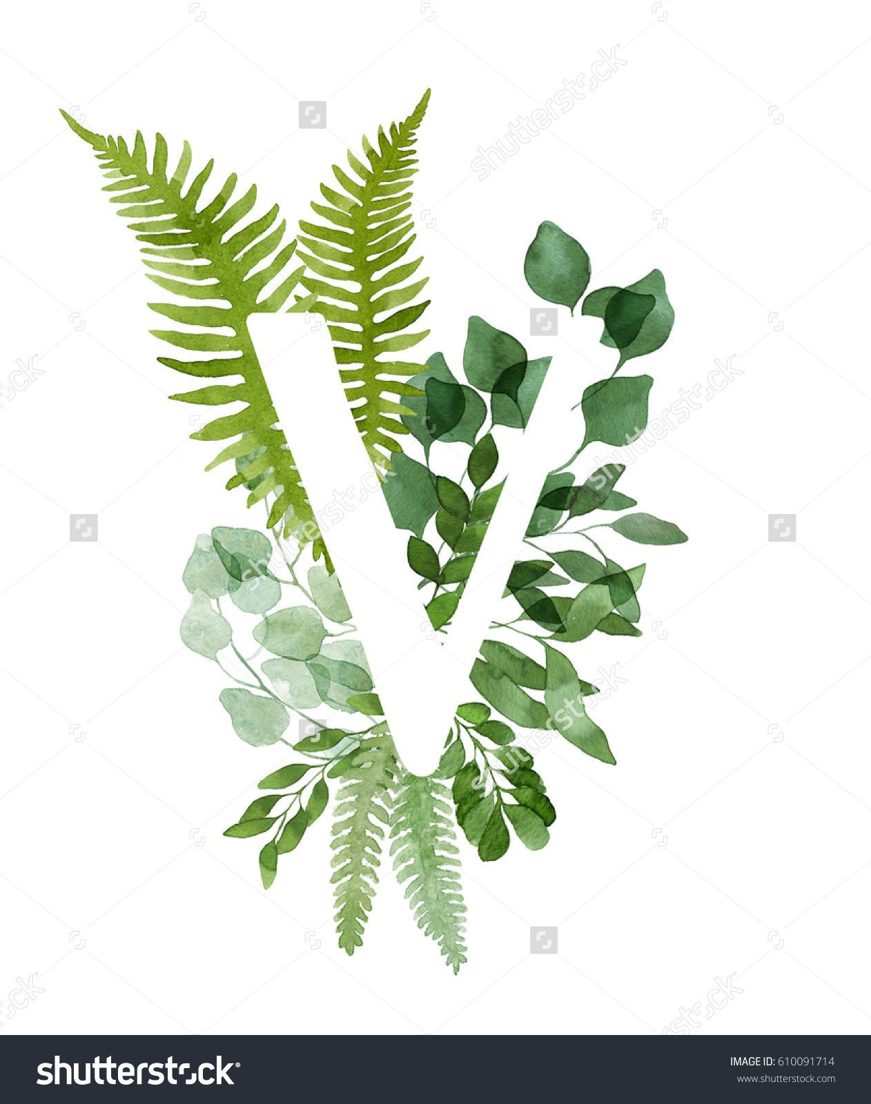 Floral letter V Beautiful green leaves and branches painted with watercolor Watercolor eucalyptus and fern foliage letter Green watercolor monogram