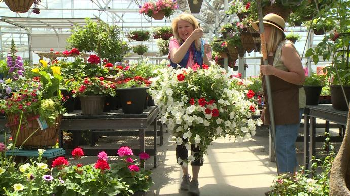 Floral shops say they try to avoid delivering flowers (WEAU)