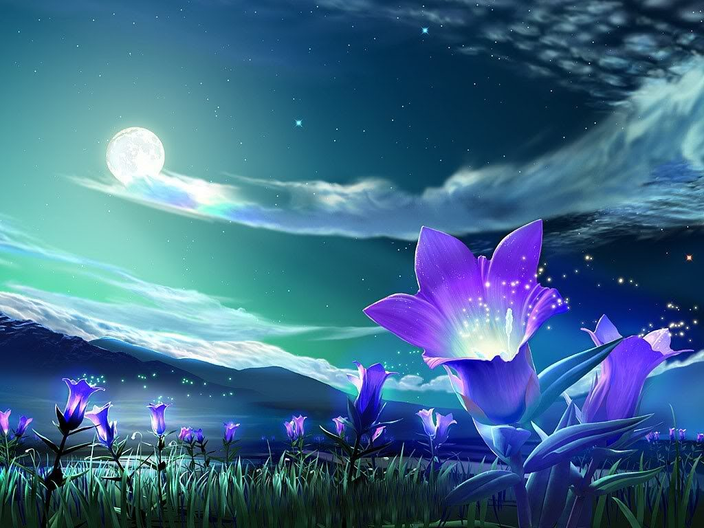 Flower Images - How to Personalise Your Wallpaper in Windows 7 (Info Wallpaper)