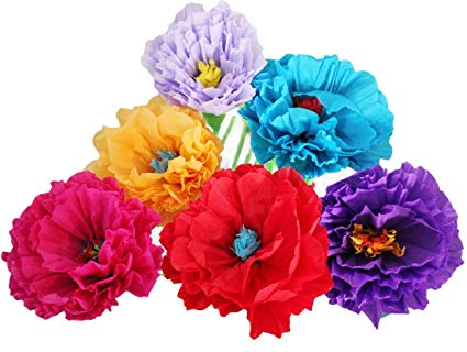 Mexican Paper Flower Set of 6 Tissue Paper Hand Made Party Fiesta (Amazon.com)