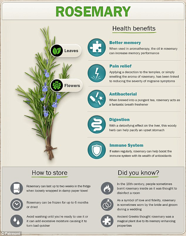 Rosemary Herbs For Health (Daily Mail)