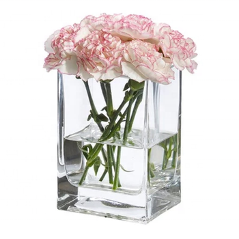 Square Glass Vase For Flower Arrangement (alibaba.com)
