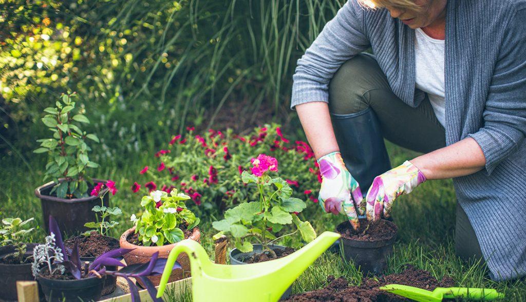 A Short Introduction To Oriental Flower Garden (AARP)