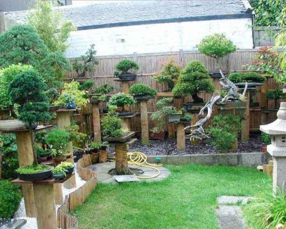 Bonsai Backyard Landscaping Ideas (Pinterest)