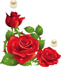 Rose Types of Flowers to Give at a Funeral (clipart-library.com)