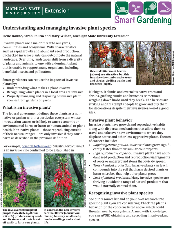 Understanding and managing invasive plant species (MSU College of Agriculture and Nature)