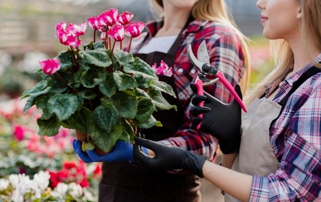 Close-up-women-holding-flowers-pot www.freepik.com