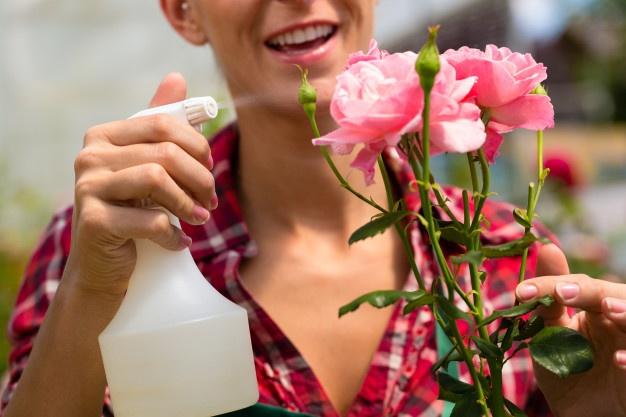 Female-gardener-market-garden-nursery www.freepik.com