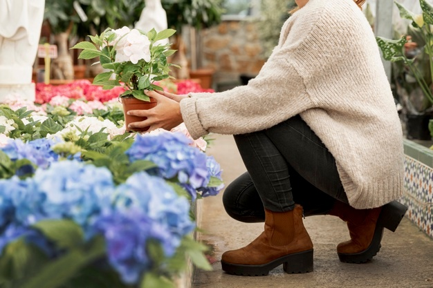 Florist-flowers-arranging-flowerpots www.freepik.com