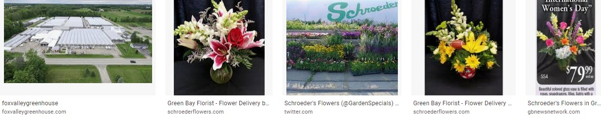 schroeder flowers in green bay wi
